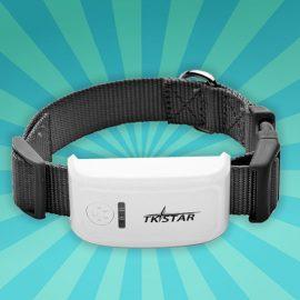 GPS Tracker hond GPS halsband